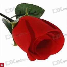 Realistic Rose Digital Voice Recorder